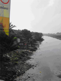 Solid waste pollution and siltation of the Buckingham Canal, one of Chennai's four major waterways